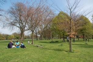 Victoria Park7